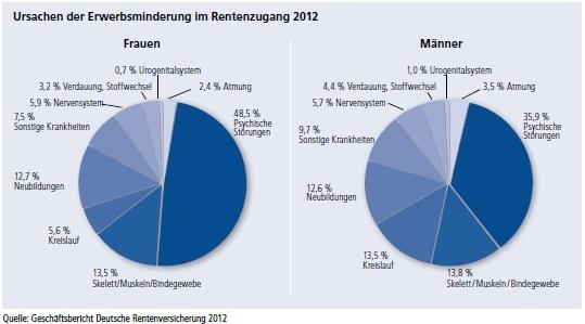 Ursachen BU gem. DRV 2012