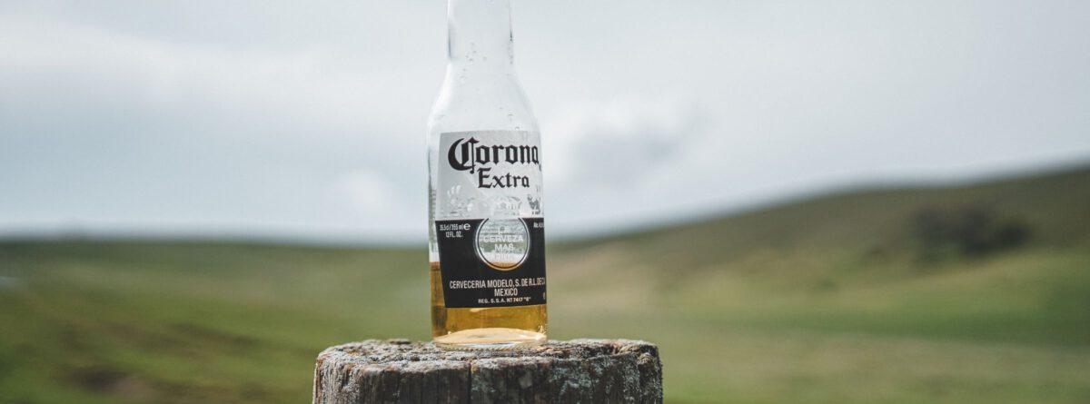 Coronaflasche auf einem Baumstamm vor Horizont